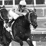 wooldridge-v-sumner-horse-racing